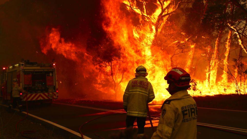 ऑस्ट्रेलिया के जंगलों में आग का तांडव