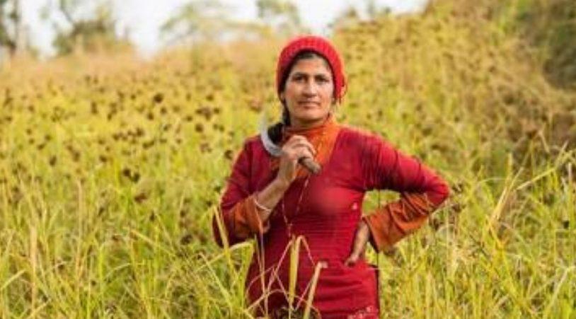 किसानों पर लॉकडाउन की मार, सरकार ने कहा 20 अप्रैल से पहले न काटे गेहूं