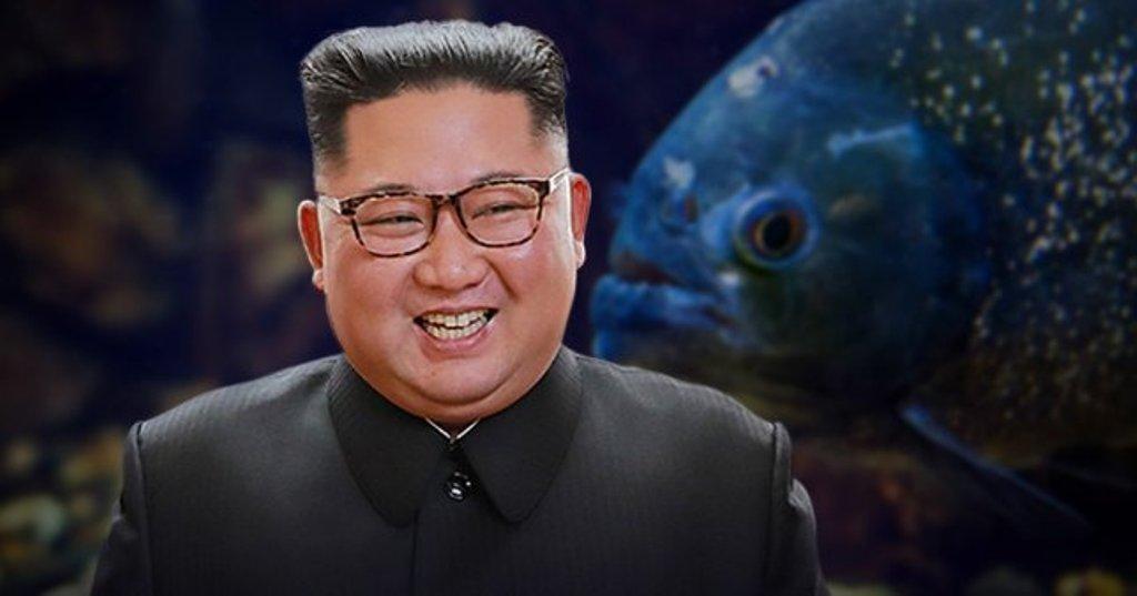 दक्षिण कोरिया का दावा, जिंदा और स्वस्थ हैं किम जोंग उन